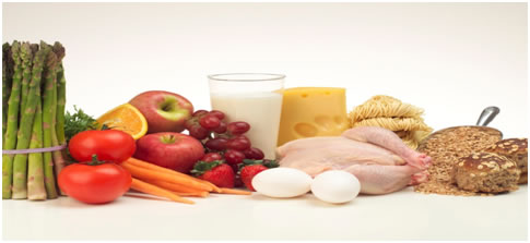 Nutrition jccoe image and text nutrition forumfinder Choice Image